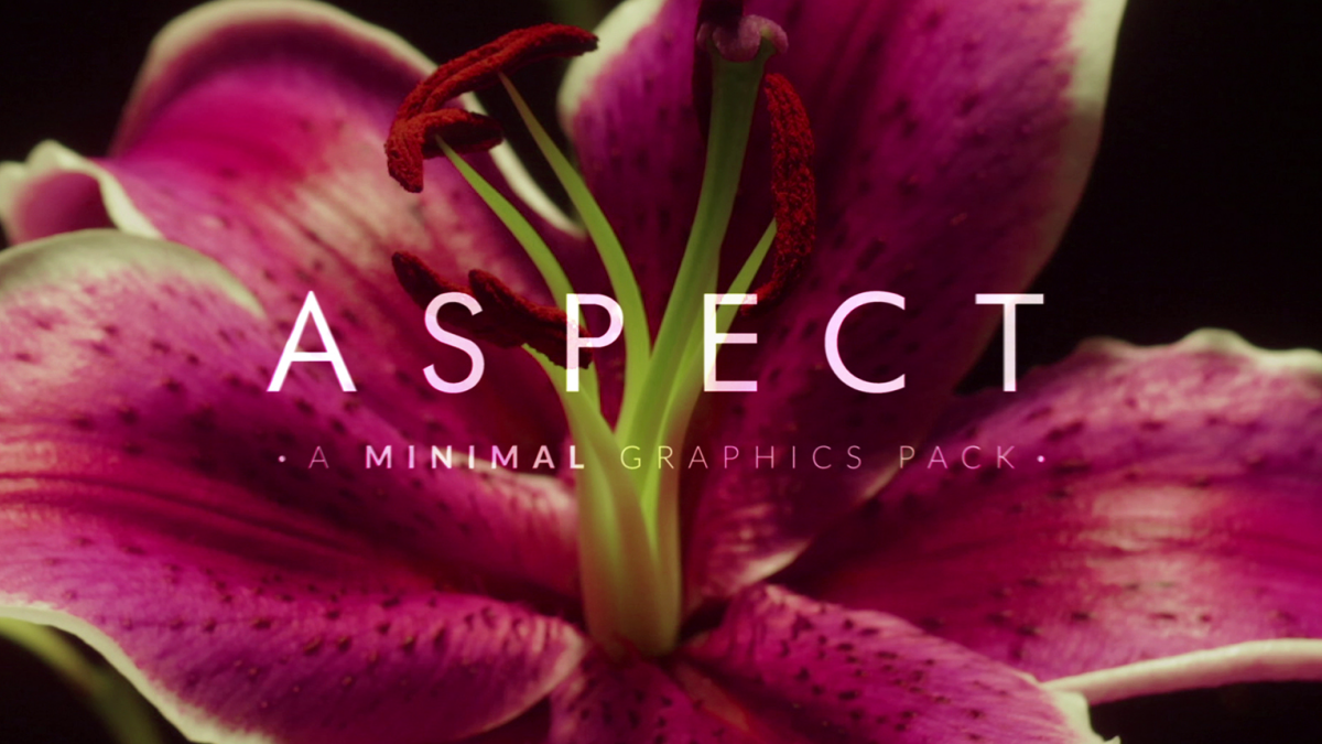 RocketStock - Aspect 200+ Minimalist Graphic Elements - Footage