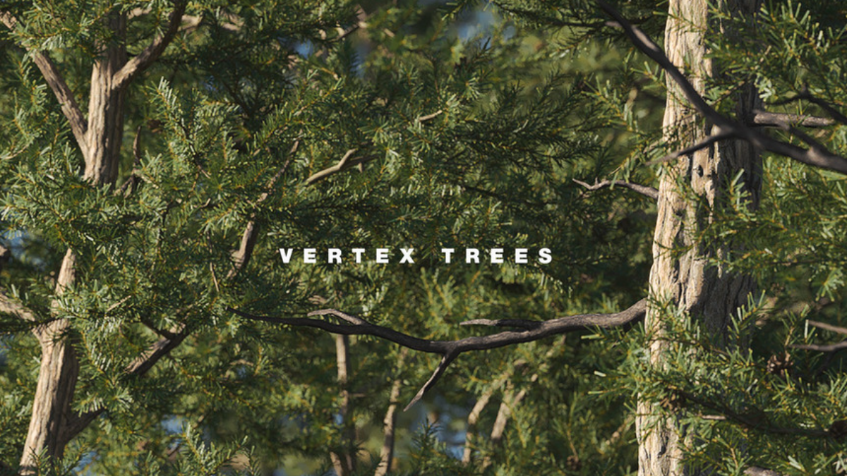 Vertex Trees - Scots Pine - 01 - Model 3D Download For Free