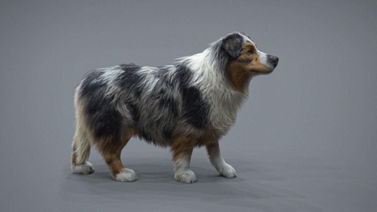 Realistic Dog Grooming for Production with Xgen - Maya Tutorials