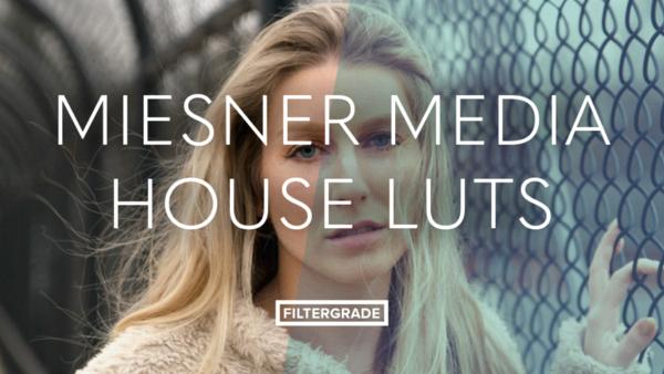 Miesner Media House LUTs - Cinema & Film LUTS (Win/Mac) - LUTS MÀU ĐẸP