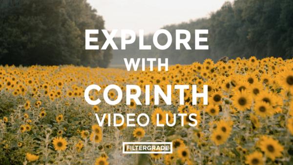 Corinth Suarez Video LUTs - Cinema & Film LUTS (Win/Mac) - LUTS MÀU ĐẸP