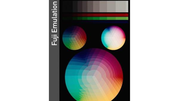 Fujifilm Original LUTs (Win/Mac) - LUTS MÀU ĐẸP
