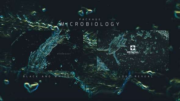 Videohive 24386328 - Microbiology Package - After Effect Template