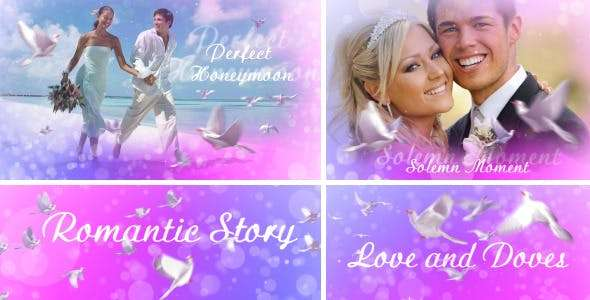 Love And Doves Project